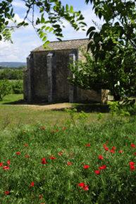 Chapelle St Pierre coquelicots Colonzelle Photo P.Thomas OT Pays de Grignan - Enclave des Papes