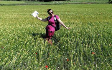 top 8 rando femme au milieu d'un champ de blé