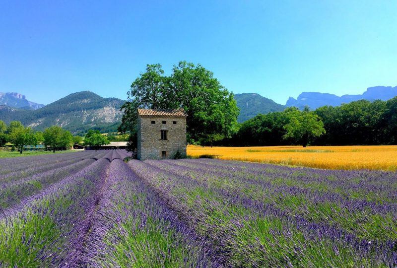 Drôme Provençale à Grignan - 1