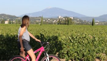 Ventoux vignes vélo cotes du rhone