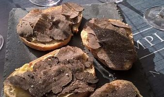 Toasts truffés