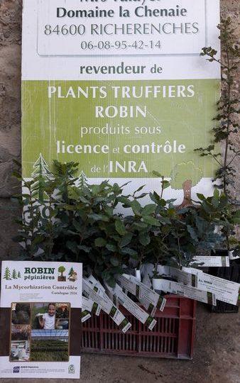 Maison Valayer – Vente de plants truffiers à Richerenches - 1