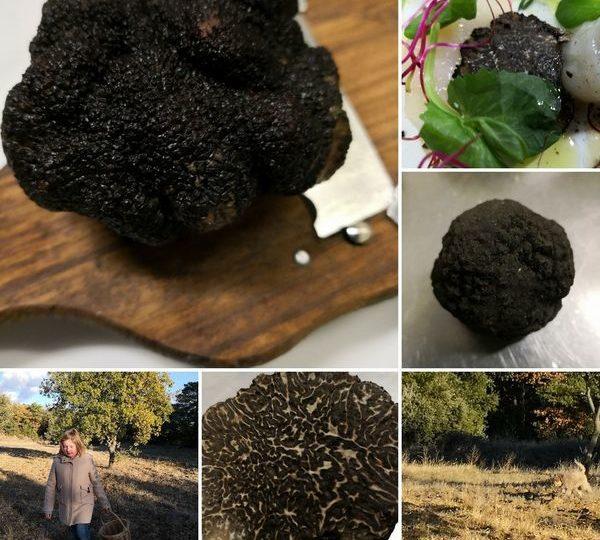 Le plaisir à l'état pur : un week-end gastronomique en Provence à Valréas - 6