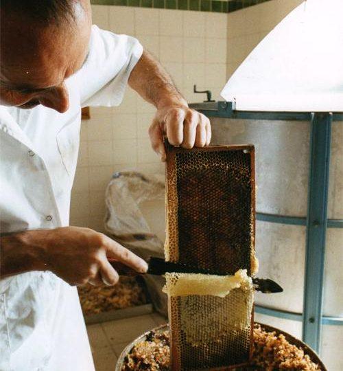 Miellerie des Délices au Miel à Roussas - 0