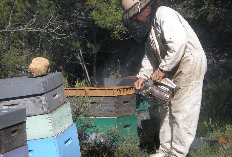 Miellerie des Délices au Miel à Roussas - 1