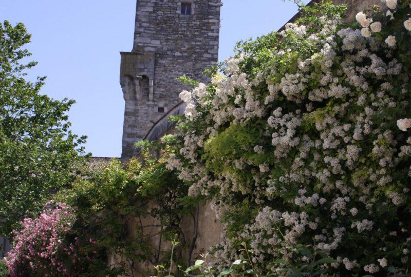 Circuit des roses anciennes dans le village à Grignan - 5