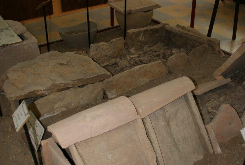 Musée de pays – Archéologie et Paléontologie à Valréas - 1