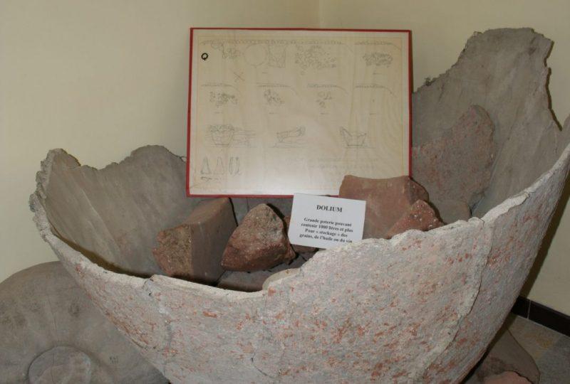Musée de pays – Archéologie et Paléontologie à Valréas - 2