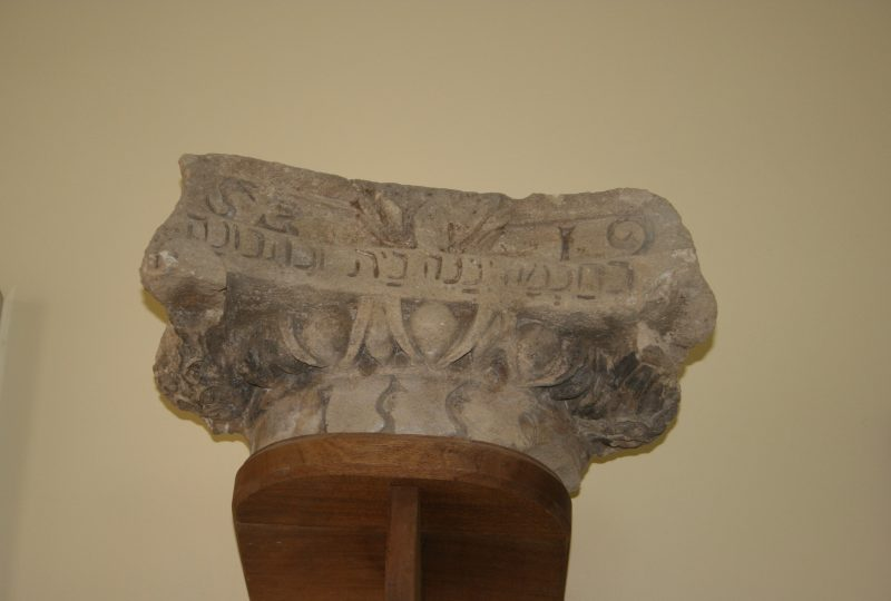 Musée de pays – Archéologie et Paléontologie à Valréas - 3
