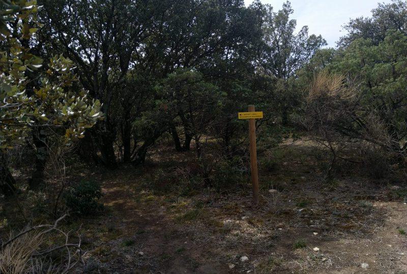 Parcours Santé à Taulignan - 3