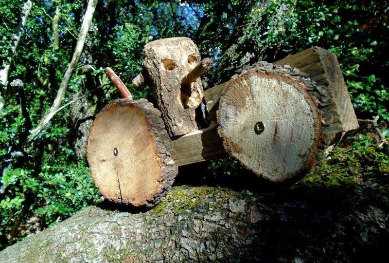La Forêt d'Emile Zarbre à Saint-Remèze - 5