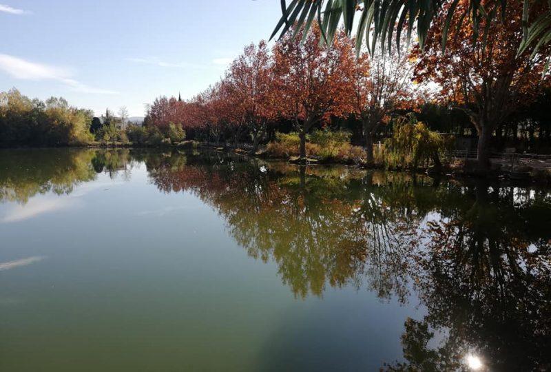 Lac de Valréas à Valréas - 2