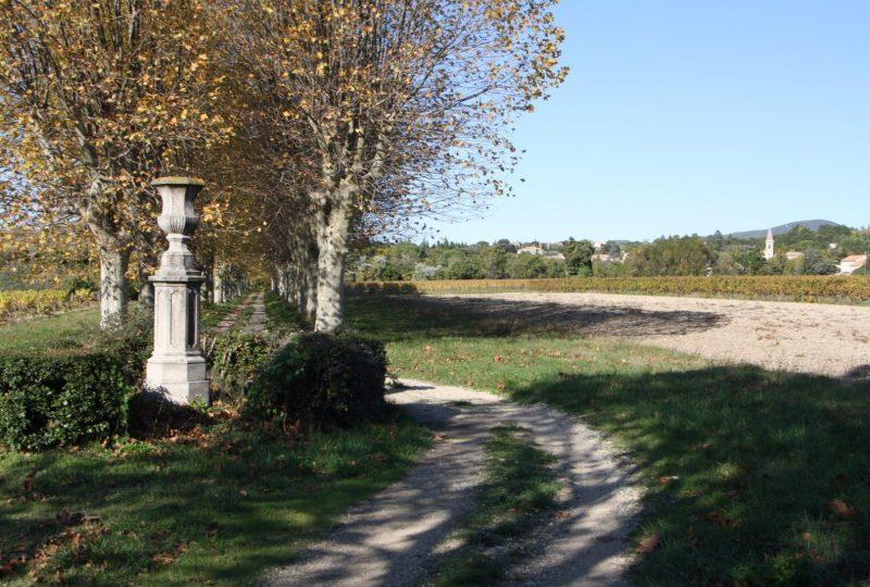 Château Urdy et parc à Saint-Pantaléon-les-Vignes - 11